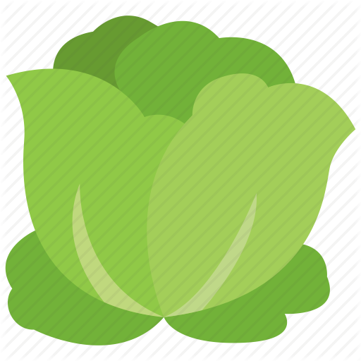 image royalty free download Vegetables flat by minh. Cabbage clipart iceberg lettuce.
