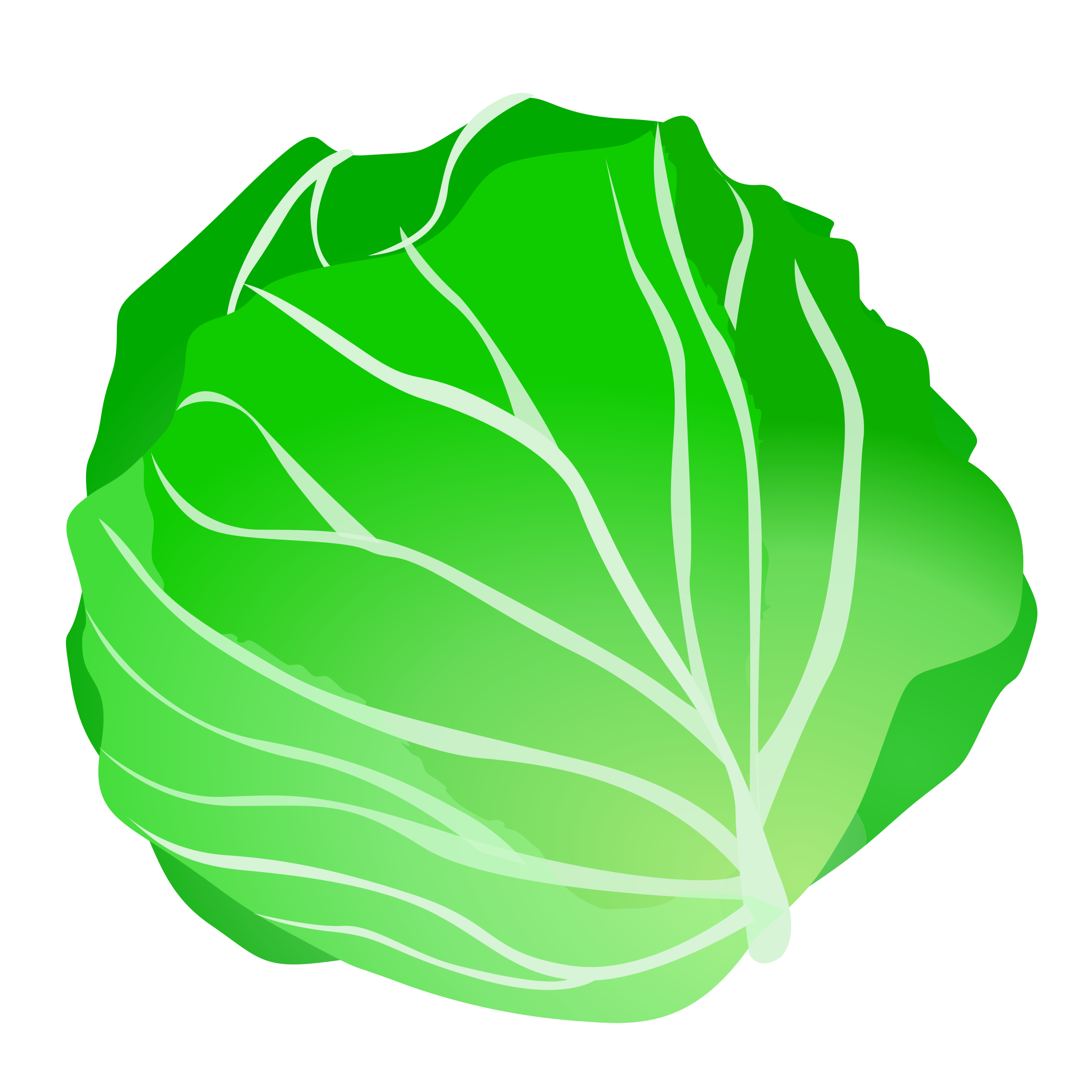 graphic free library . Cabbage clipart letus.