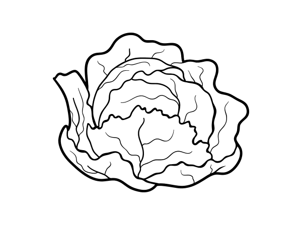 image Organic cabbage coloring page