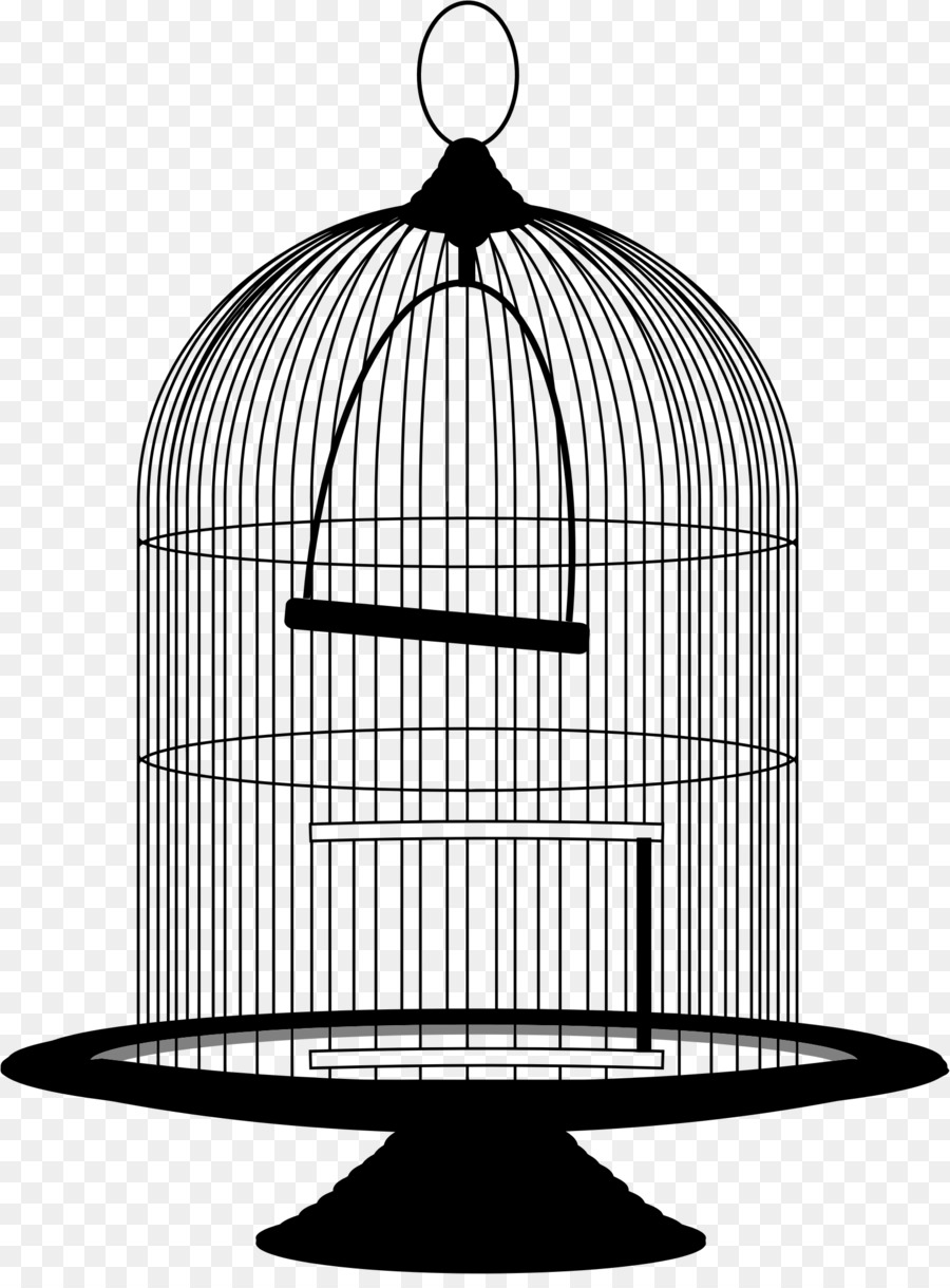 transparent library Bird illustration product transparent. Cage clipart.