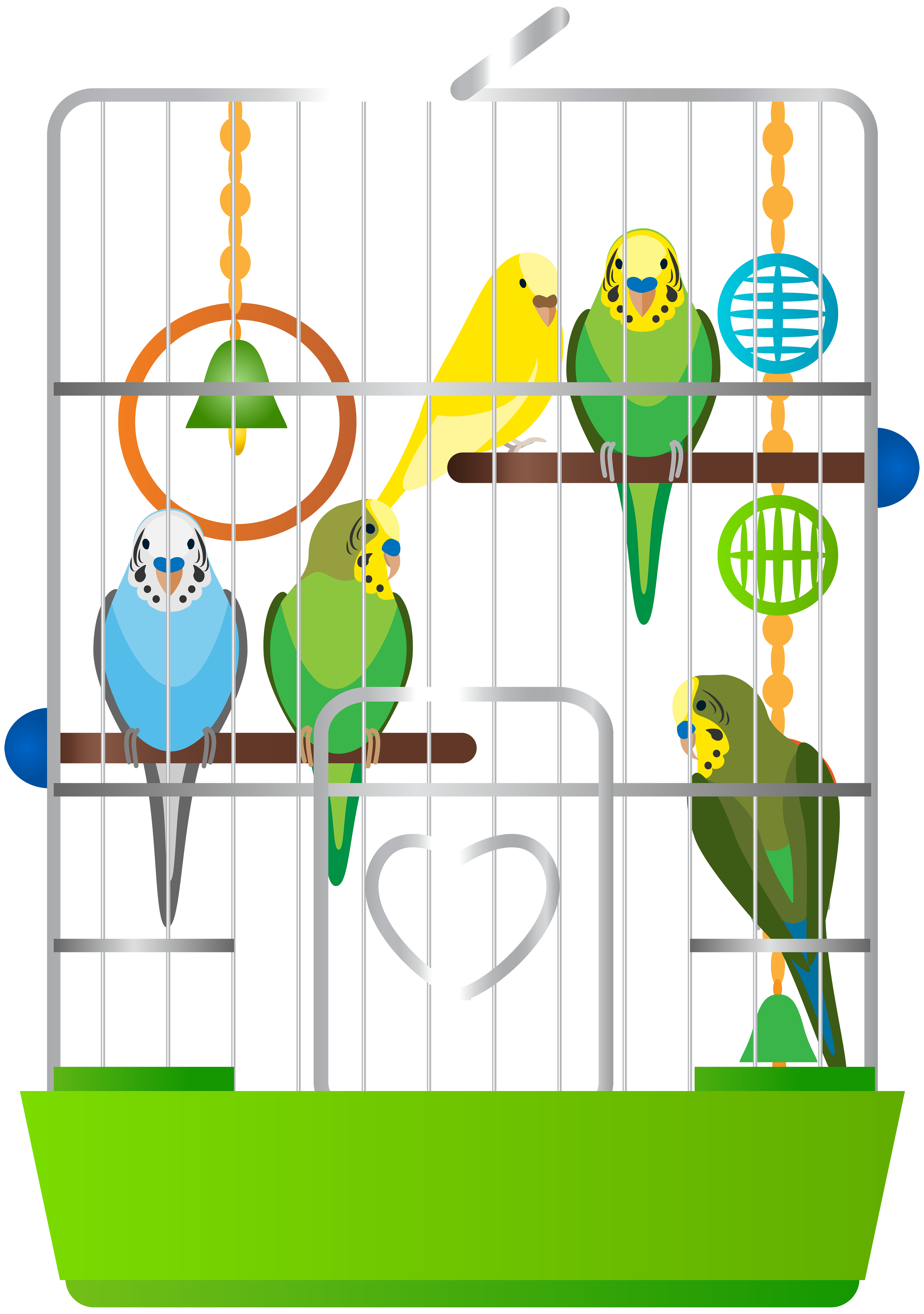 svg free download Cage clipart. With parrots png clip.