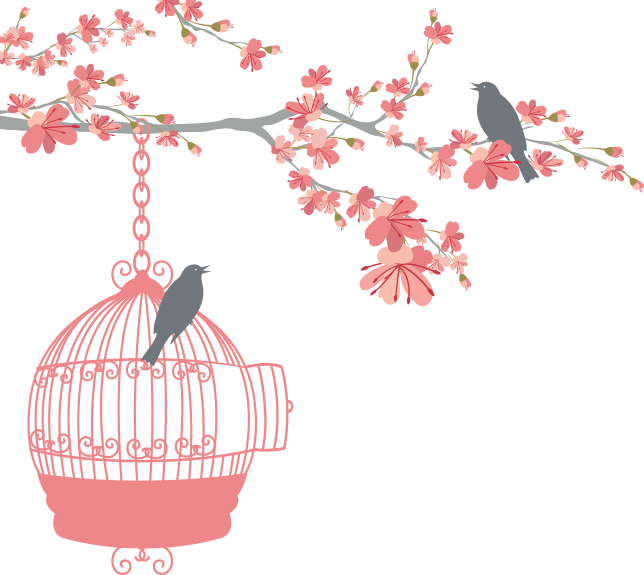 png transparent download  collection of birdcage. Cage clipart wedding.