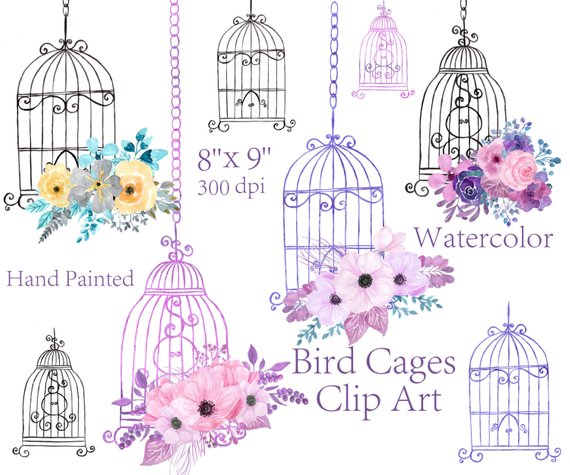 svg free library Watercolor floral bird elements. Cage clipart wedding.