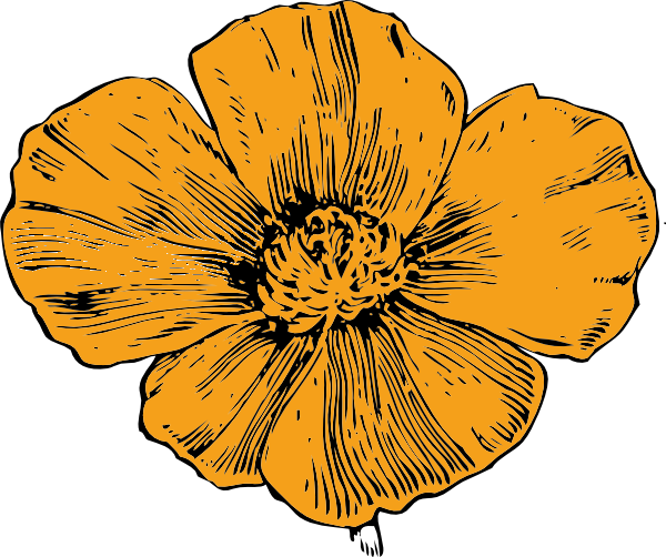 clipart free library Poppy clip art at. California clipart drawing.