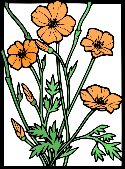 clipart freeuse stock Poppies color clip art. Poppy clipart small