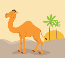 png black and white download Camel clipart. Free clip art pictures.