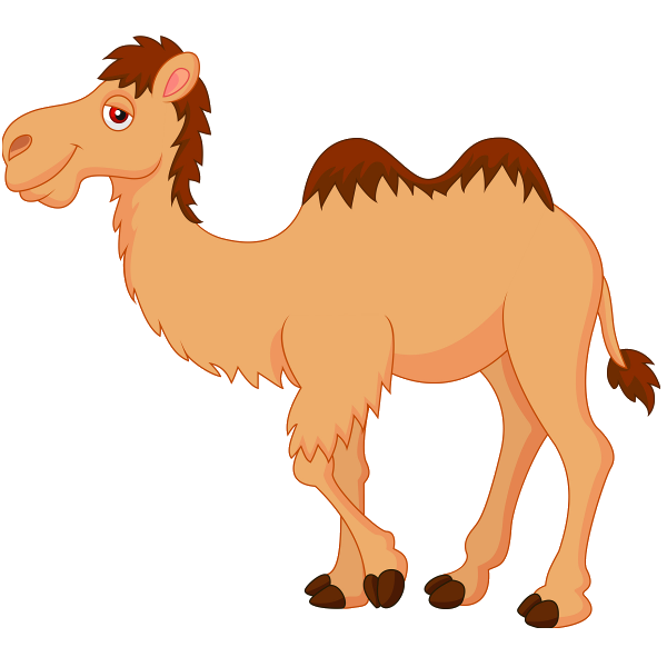 clipart royalty free download . Camel clipart