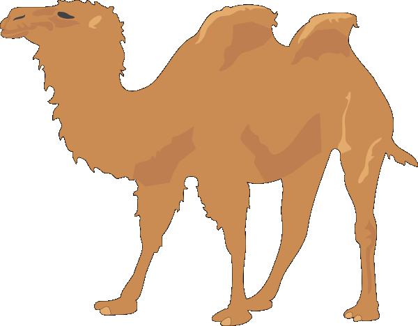 banner Camel Clip Art at Clker