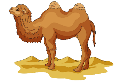 image transparent Funny pictures cartoon images. Camel clipart adaption.