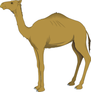 vector freeuse Clip art at clker. Camel clipart adaption.