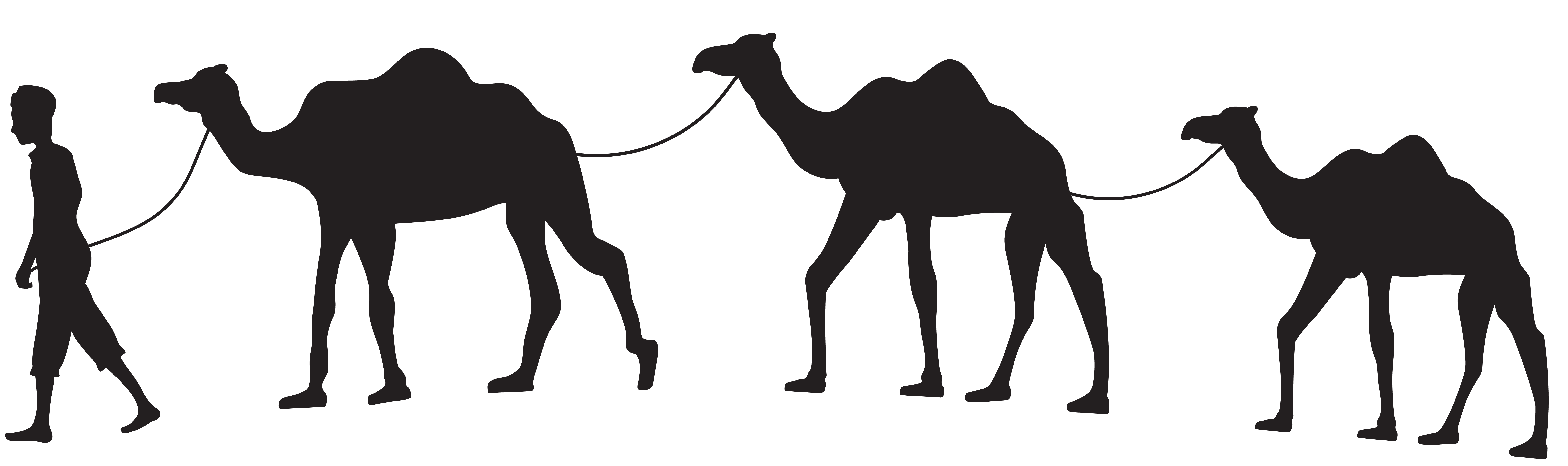 free stock Caravan silhouette png clip. Camel clipart camel shadow.
