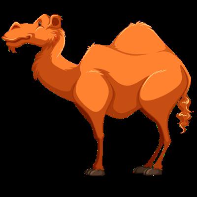 image free library Camel PNG Cartoon Transparent Camel Cartoon