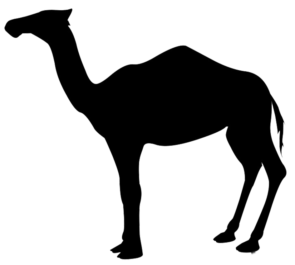 png library stock Camel clipart magi. Silhouette at getdrawings com.