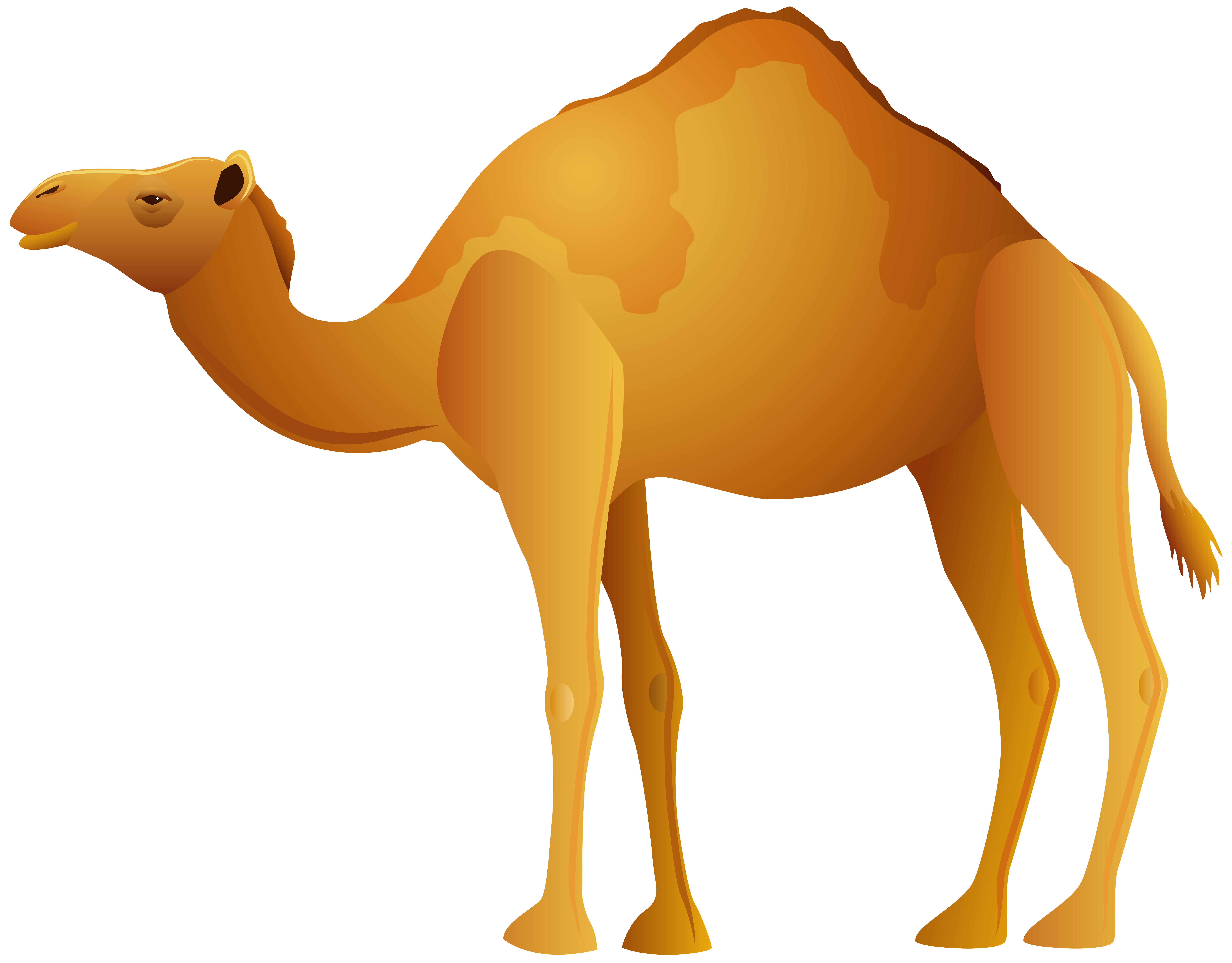 vector Png clip art best. Camel clipart