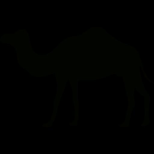 clip art library camel vector arabic desert #91195175