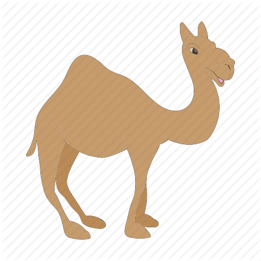 banner freeuse stock camel vector flat #91193859