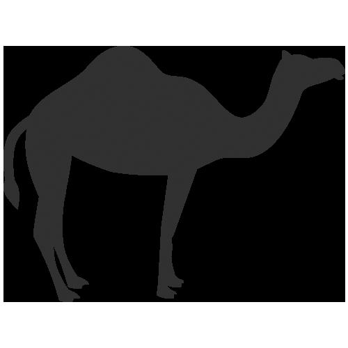 clip library Download Camel Icon