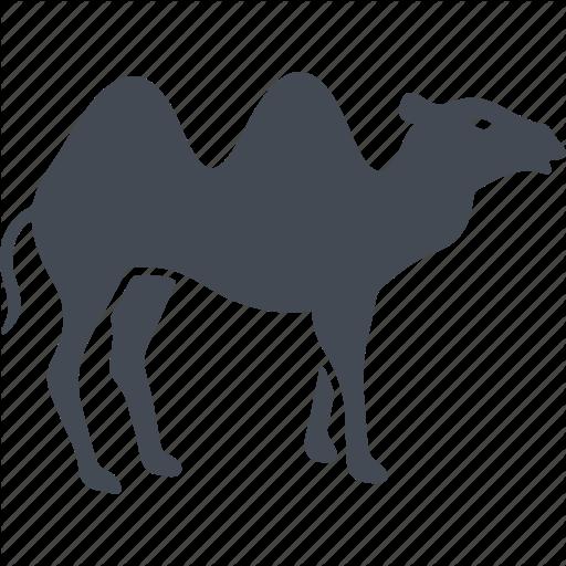 clip royalty free camel vector uae #91191831