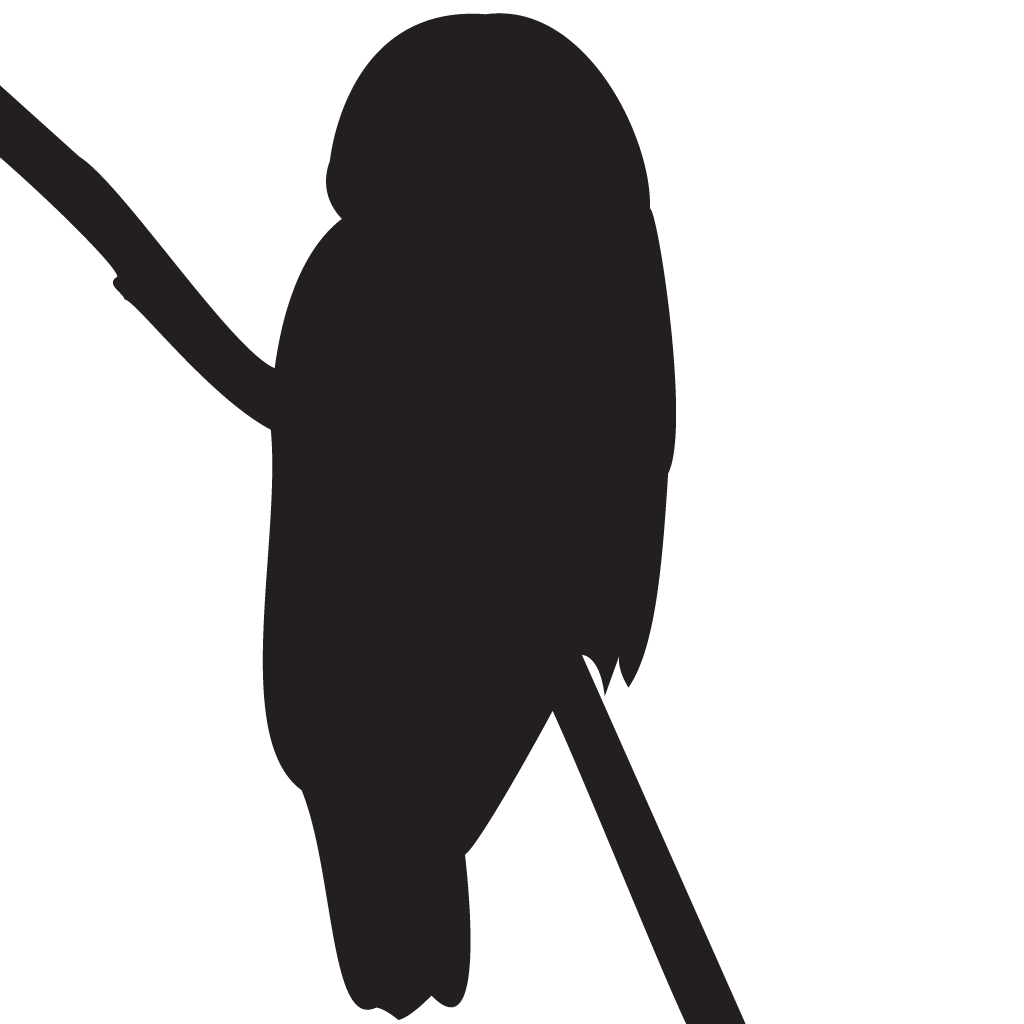 png black and white stock Owl Silhouette Images at GetDrawings