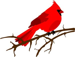 clip art freeuse download Cardinal clipart. Clip art illustration of