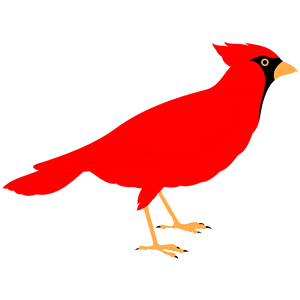 royalty free Cardinal clipart. Free pictures clipartix .