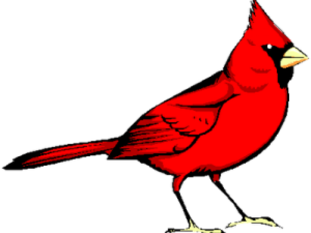graphic freeuse library Cardinal clipart. Free on dumielauxepices net