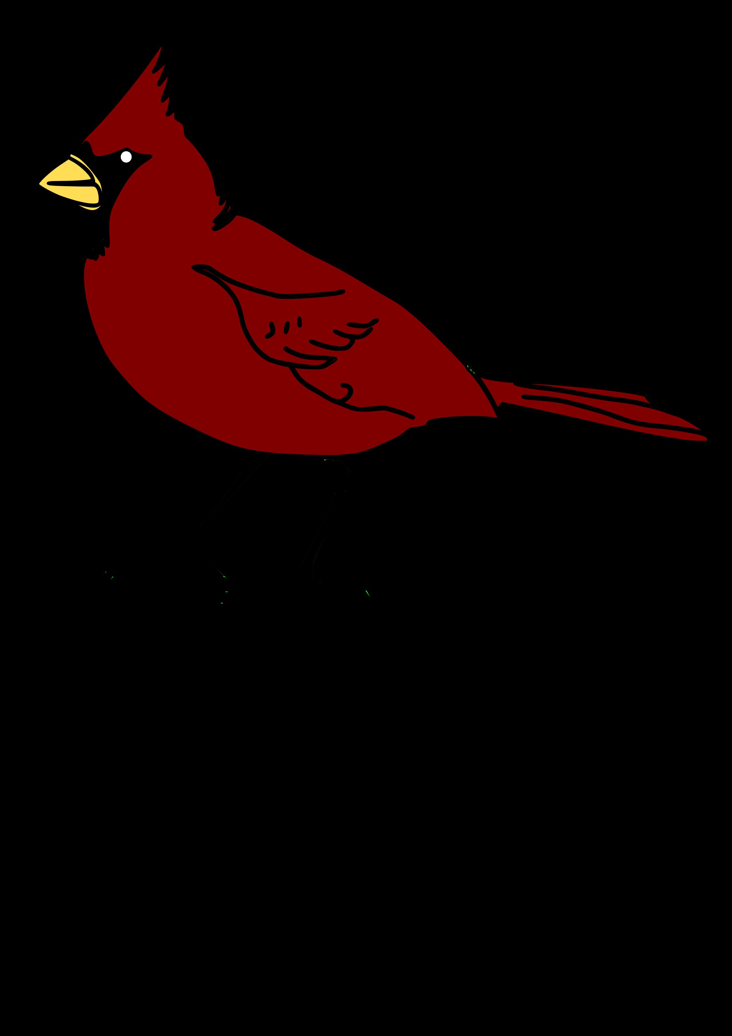 banner freeuse Cardinal clipart.