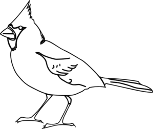 banner free Cardinal clipart black and white. Outline clip art starbucks.