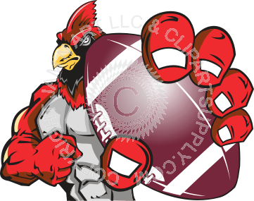 banner library download Cardinal clipart cardinal football. Holding .