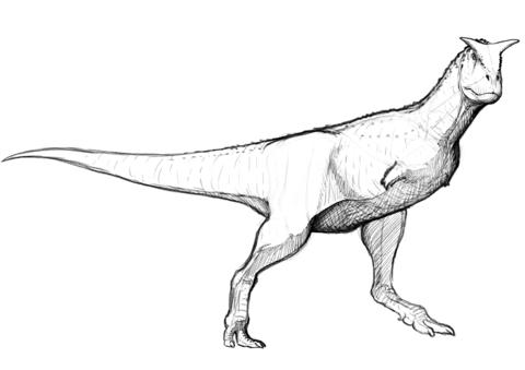 image black and white Sastrei free printable . Carnotaurus Dinosaur Coloring Page