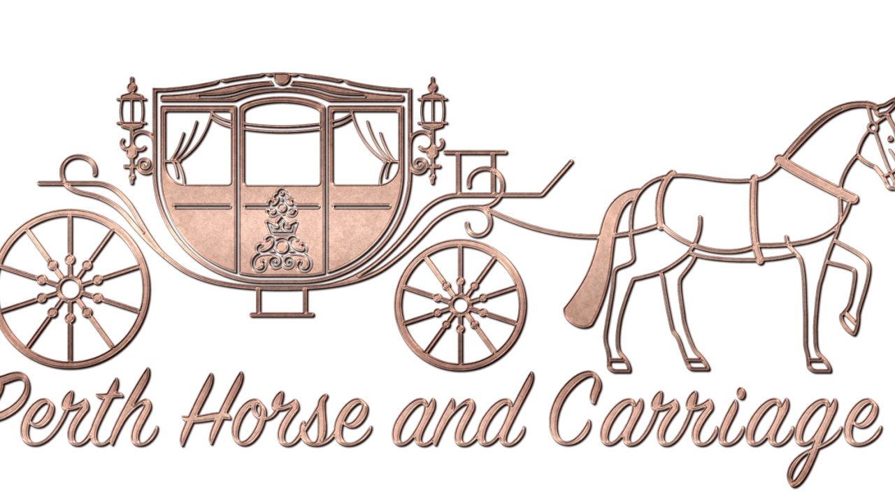 vector black and white Carriage clipart wedding carriage. Cliparts x carwad net.