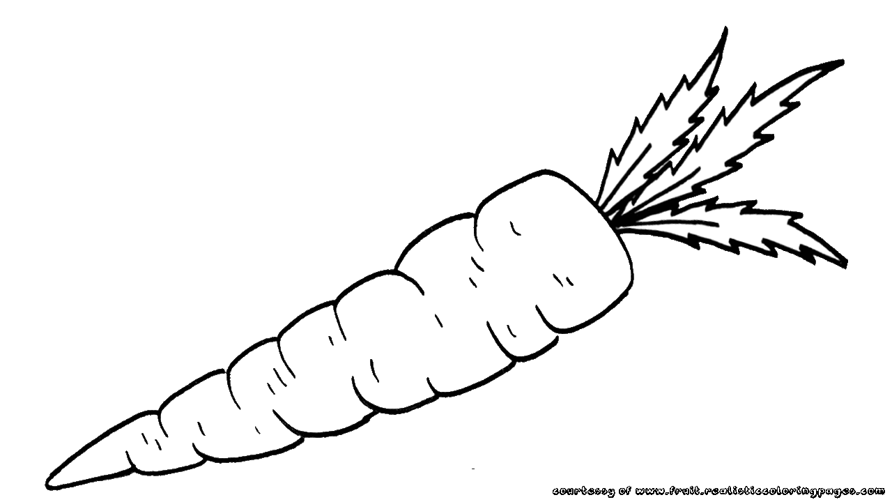 freeuse download Carrot clipart black and white. Pencil in color png
