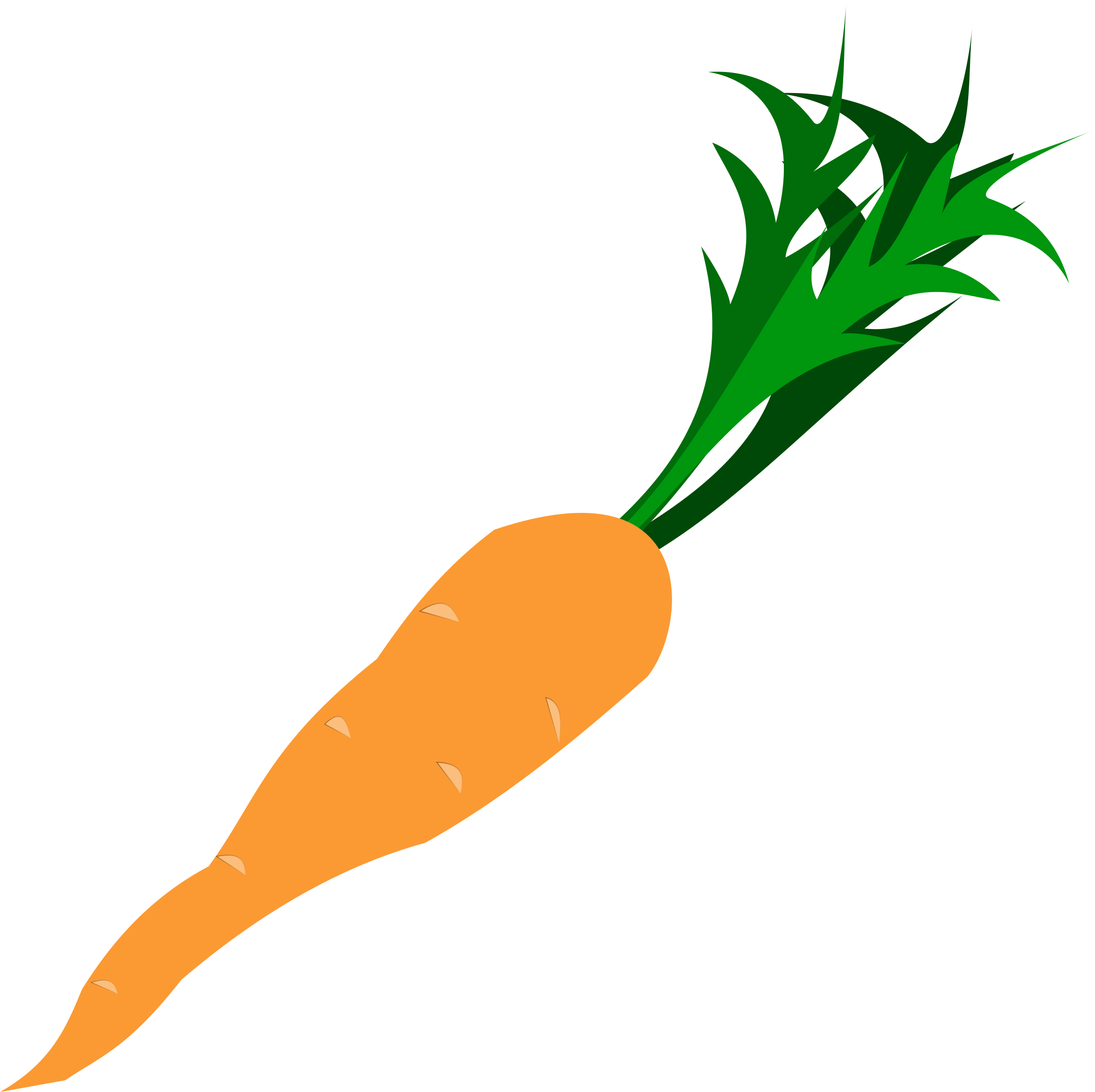 svg freeuse download Clipart leafy vegetable top. Vector carrot bunch