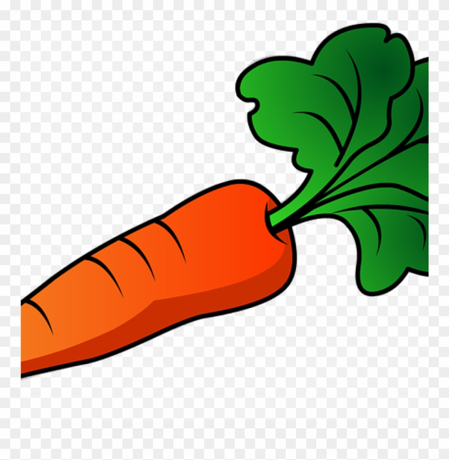 graphic library Carrot clipart carrott. Free jpg transparent huge
