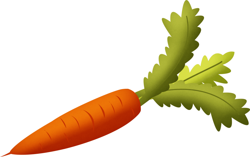 clipart download Png free images toppng. Vector carrot clipart
