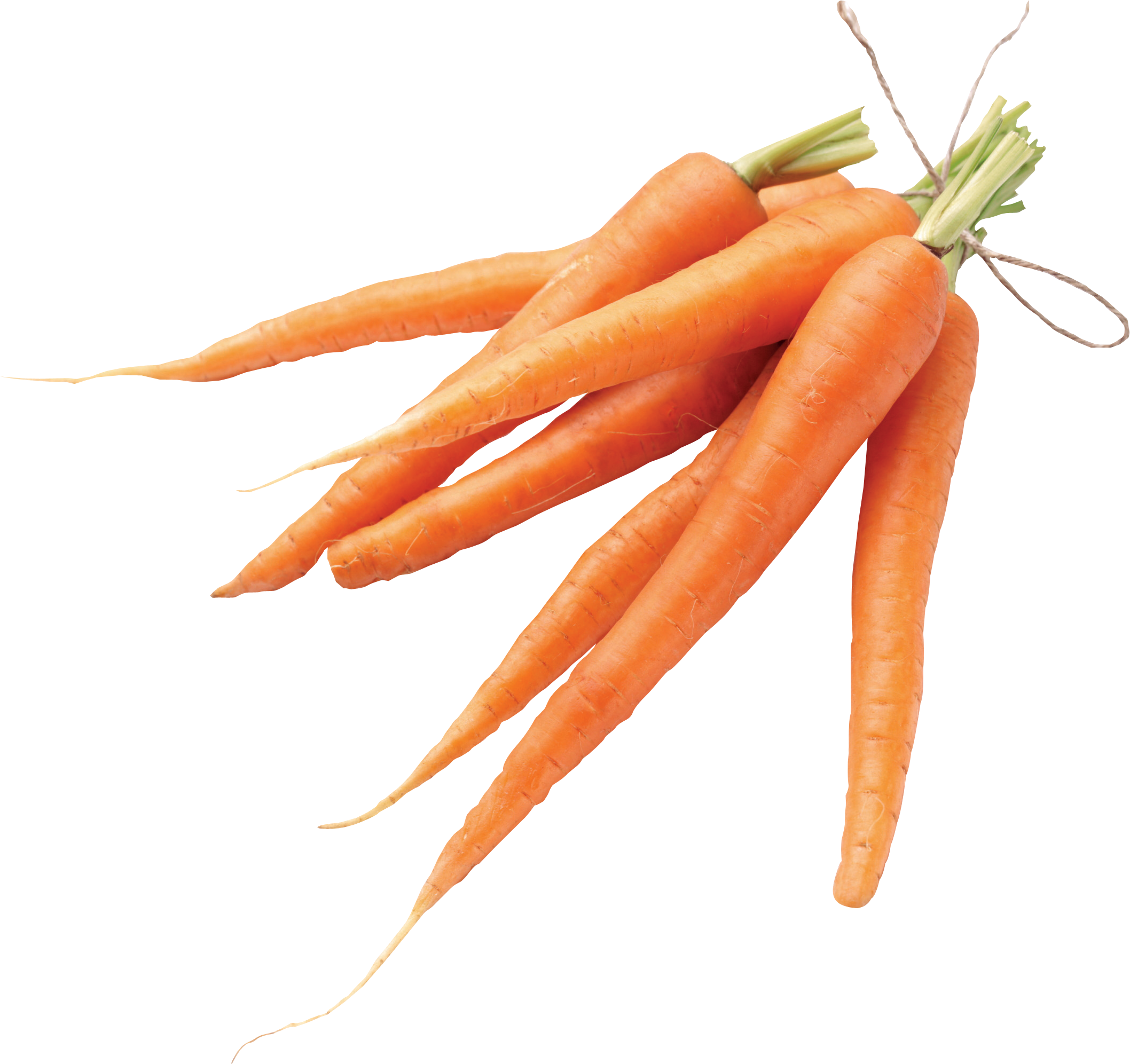 graphic download Buy purees fruit canadian. Vector carrot root vegetable