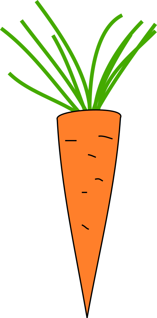 png library Krzysiu net public domain. Vector carrot leave