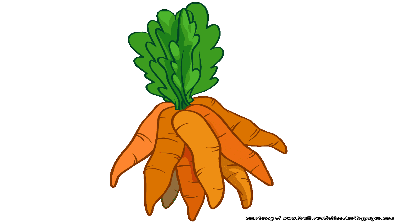 graphic royalty free download carrot clipart orange colored #77205635