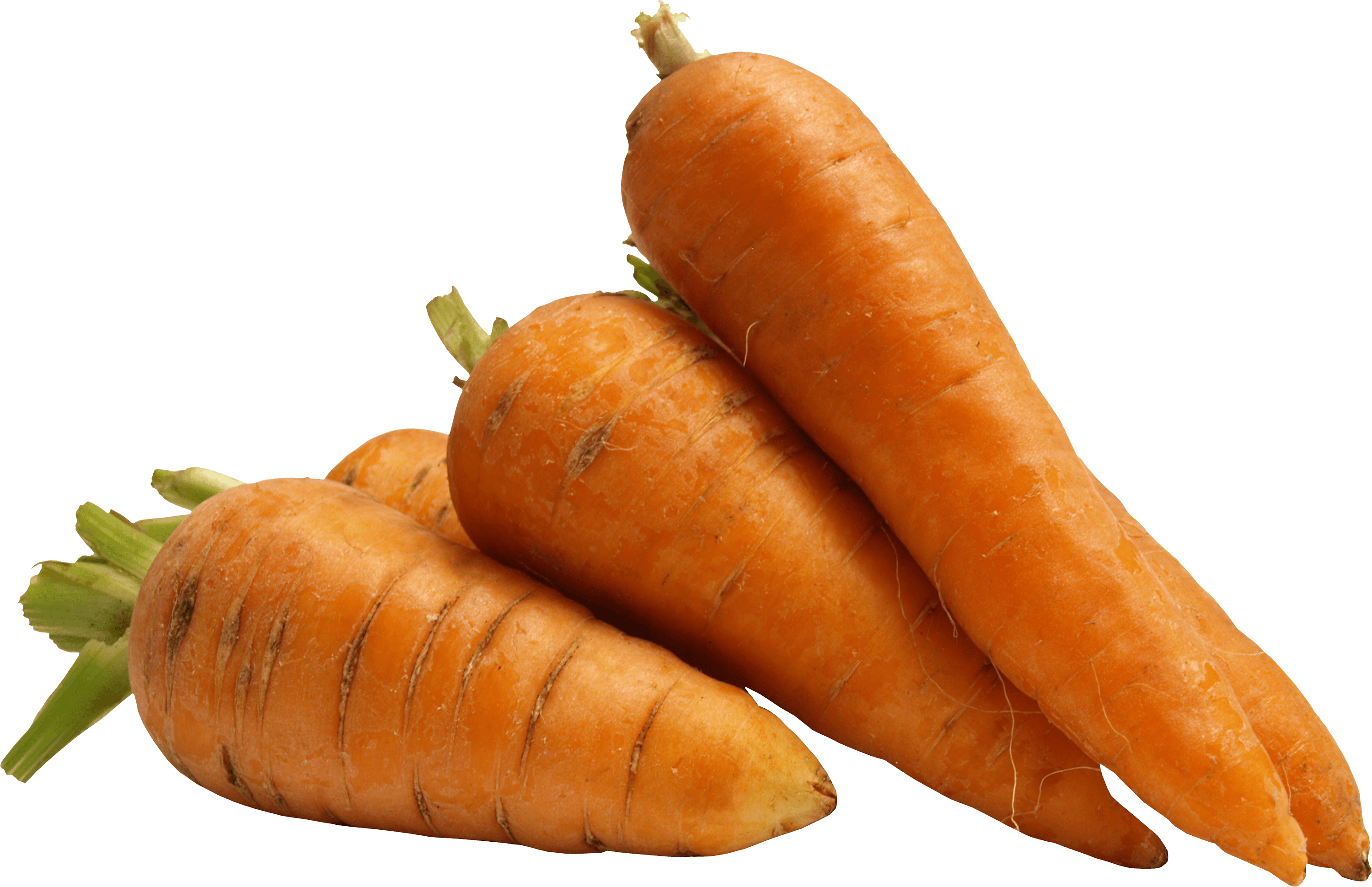 picture royalty free download A few carrots png. Transparent carrot
