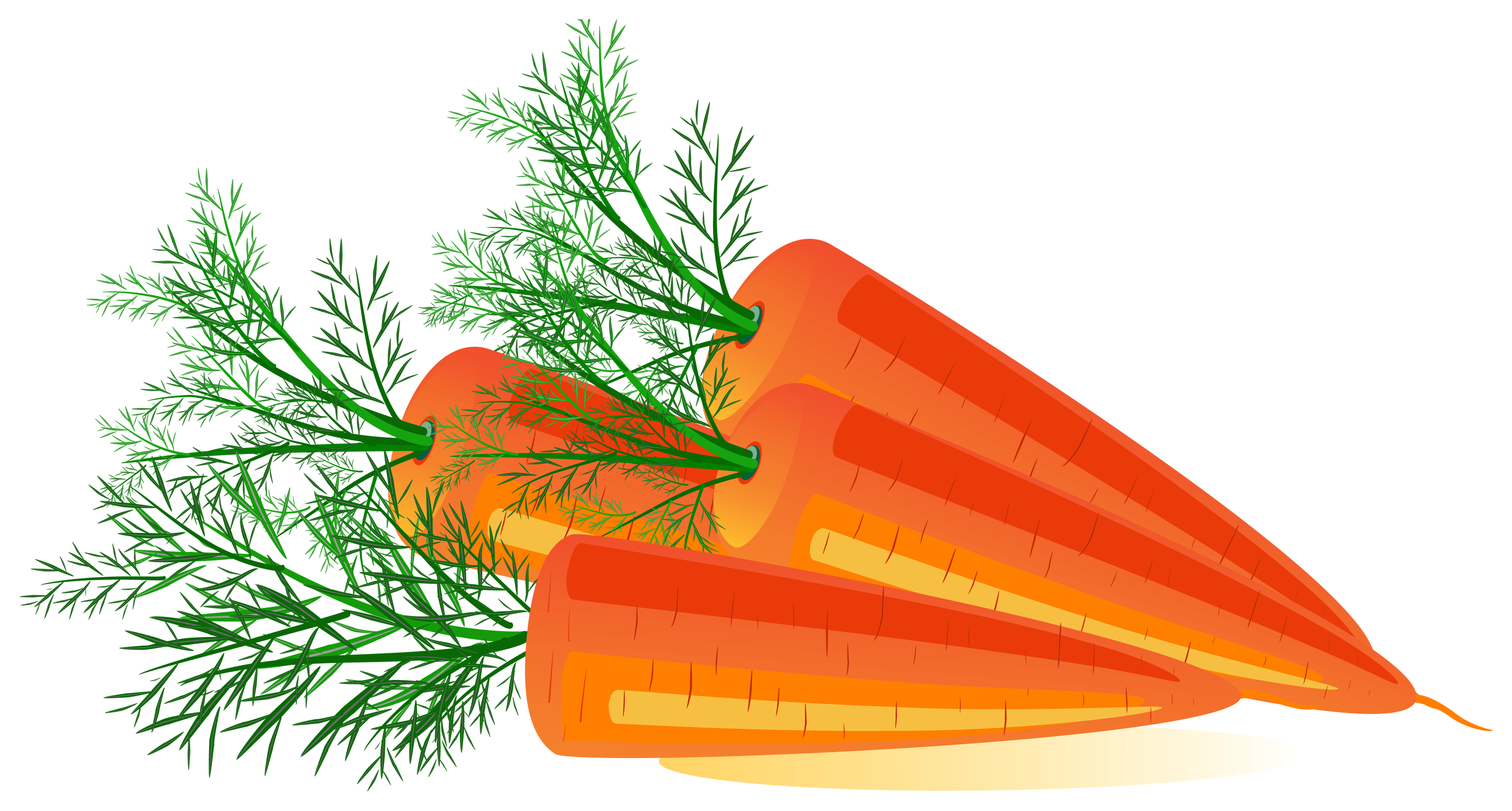 clip art black and white stock Carrot png image purepng. Carrots clipart