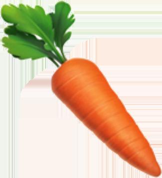 jpg royalty free download Carrot clip art loft. Carrots clipart pastel.