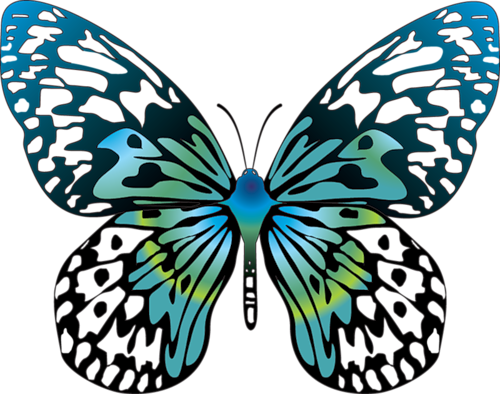 graphic black and white Cartoon Blue Transparent Butterfly Clipart