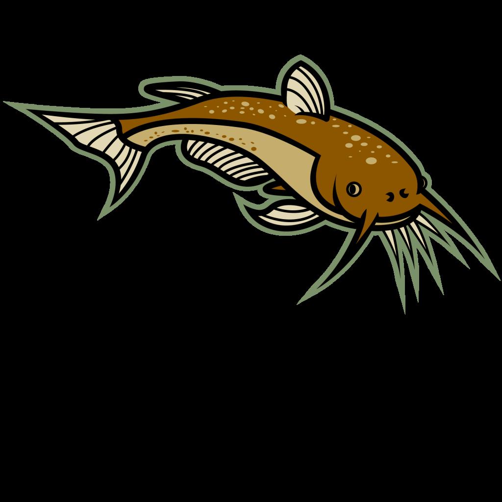 image royalty free Image of Catfish Clipart