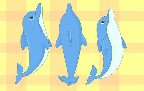 clip free library Vector dolphin dolphine. Cartoon free download