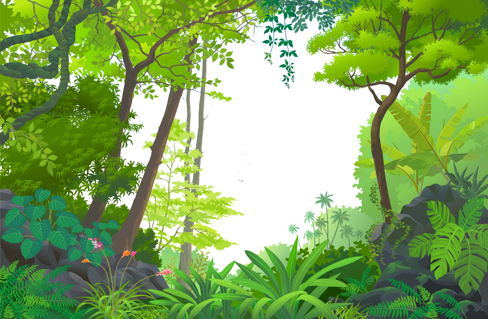 banner black and white Jungle Euclidean vector Tropical rainforest