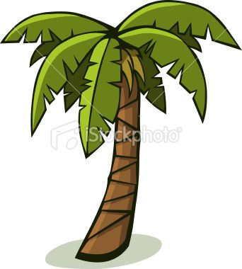 banner black and white stock Palm drawing tropical tree. A solitary in .