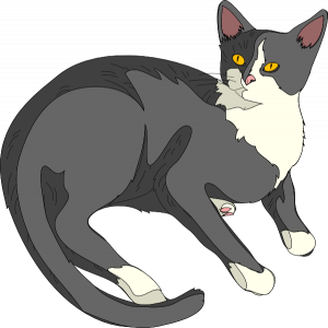 jpg free download Free cat clipart to. Kitten transparent public domain