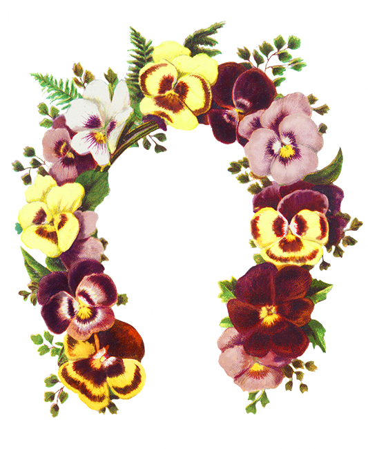 svg freeuse library Flower borders and frames. Cat clipart floral.