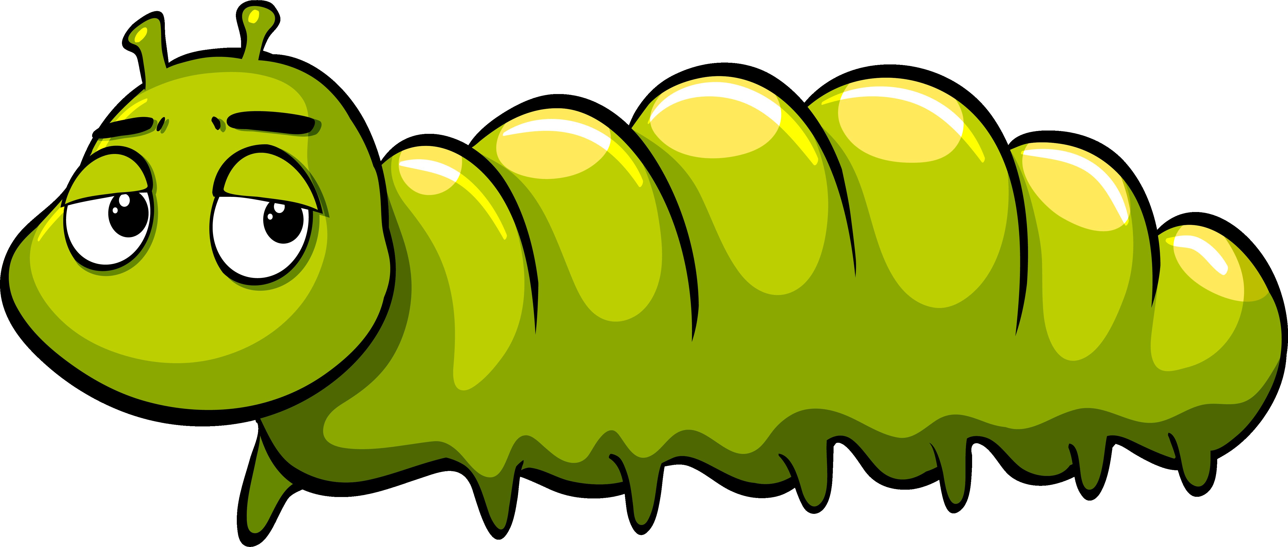 clip art royalty free download Royalty free green cartoon. Caterpillar clipart illustration.