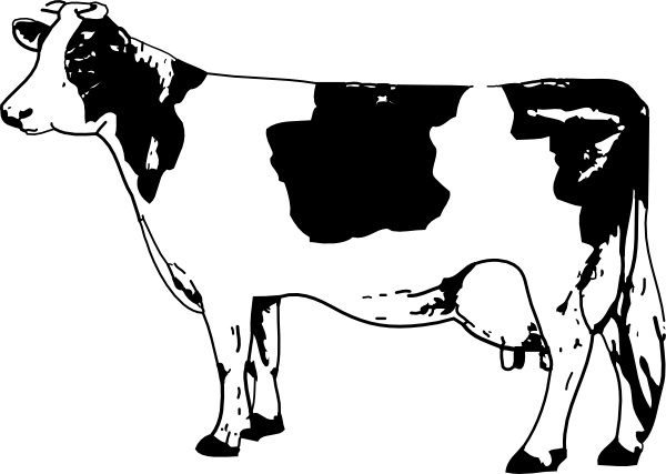 vector library library Cow clipart. Clip art free vector.